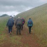 Mt Elephant Hike